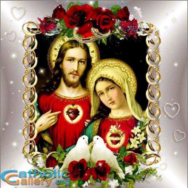 Check out our Awesome Gallery of Jesus Mary here. Galleries on Lord Jesus, Mother Mary, Holy Family and other catholic Pictures are regularly updated here.