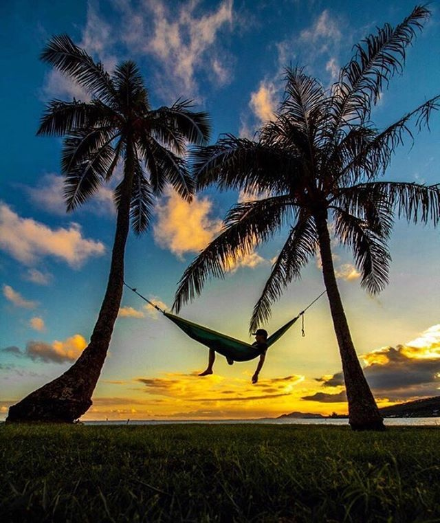 Finally Put Up A Hammock Not Quite Like This But The Feeling Of Satisfaction Was Similar Les Plus Beaux Paysages Paysages Du Monde Beau Paysage