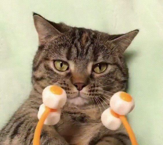 Cat Face Massager – Novelty Gift Ideas