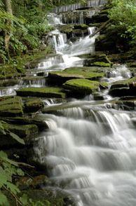 Saunders Springs in Radcliff, Kentucky