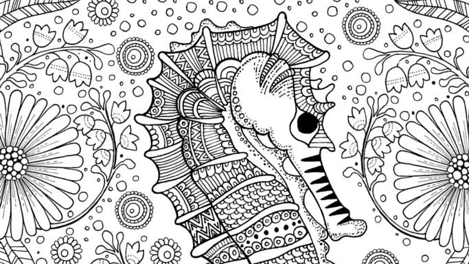 This detailed free seahorse colouring page for adults or teens is perfect for relaxed colouring in. A beautiful sea themed colouring sheet.