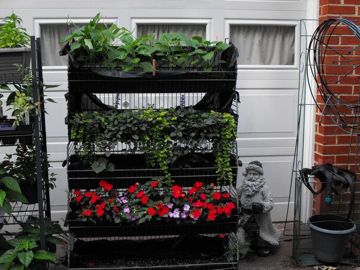 48 Best Vertical Vegetable Gardening Diy Images On 400 x 300