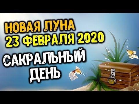 Sakralnyj Den 23 Fevralya 2020 Goda Dlya Kazhdogo Znaka Zodiaka