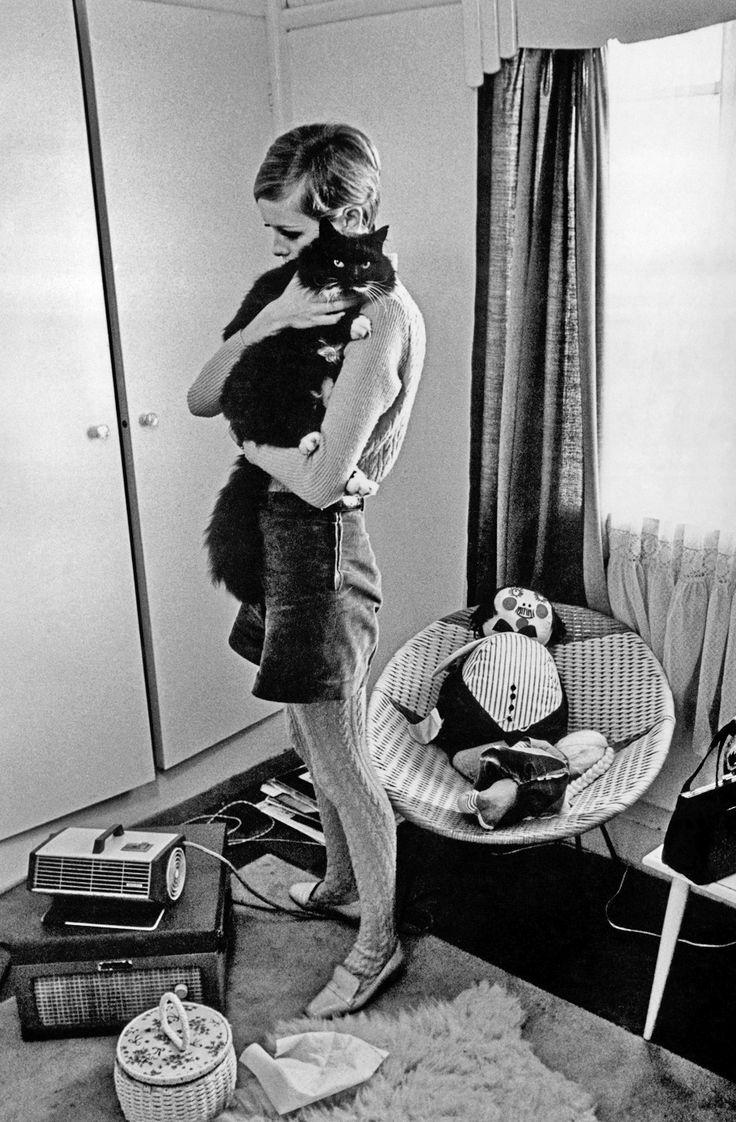 Acariciando seu gato usando uma blusinha de lã, meia calça com texturas trabalhadas, short de alfaiataria cós alto e mocassim.