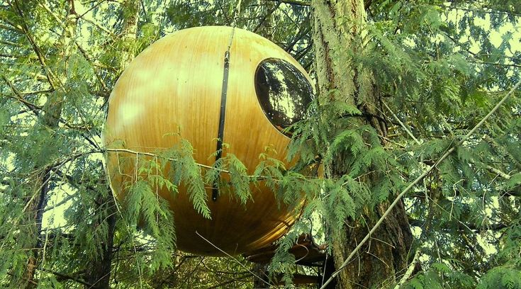 Salt Spring Island treehouse on Airbnb