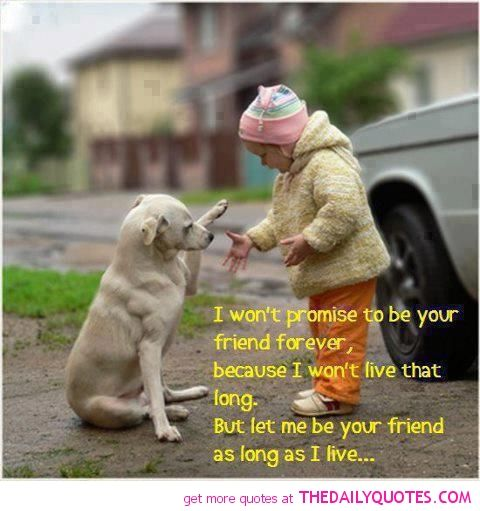 Kids Friendship Quotes: Dog -lover-pics- Cute -kids-animal- Dogs