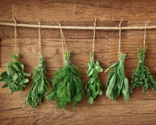 5 herbs that belong in every kitchen garden: Flat-leaf parsley, Oregano, Sweet Italian basil, Rosemary, Dill