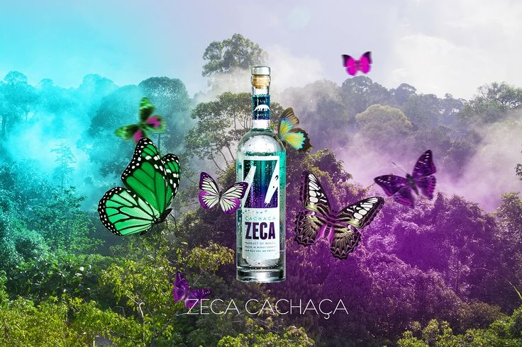 ZECA de Matos is a fourth-generation family business and is 100 percent owned by the Matos family. The family moved from Portugal to the south-east of Brazil in 1891, where they have their own suga…