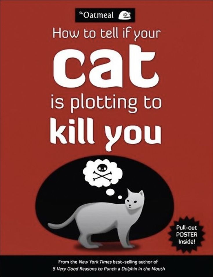 <i>How to Tell if Your Cat is Plotting to Kill You</i> by The Oatmeal