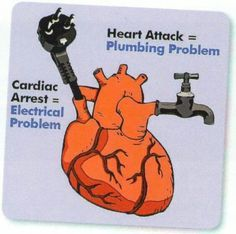 cardiology . myocardial infarction.plumbing.cardiac arrest.electrical.