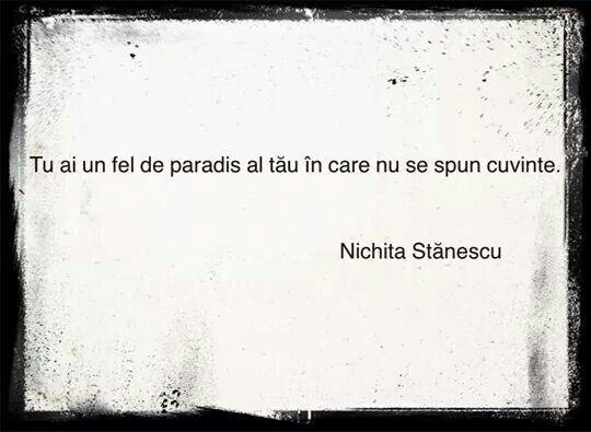 N.Stanescu