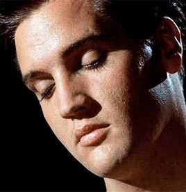 Simply gorgeous Elvis