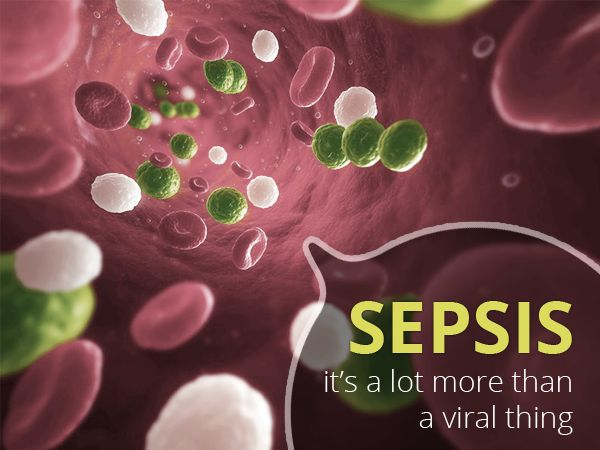 Sepsis Shock - What makes it one of the major causes of mortality in ICU? #SepticShock #SepsisShock