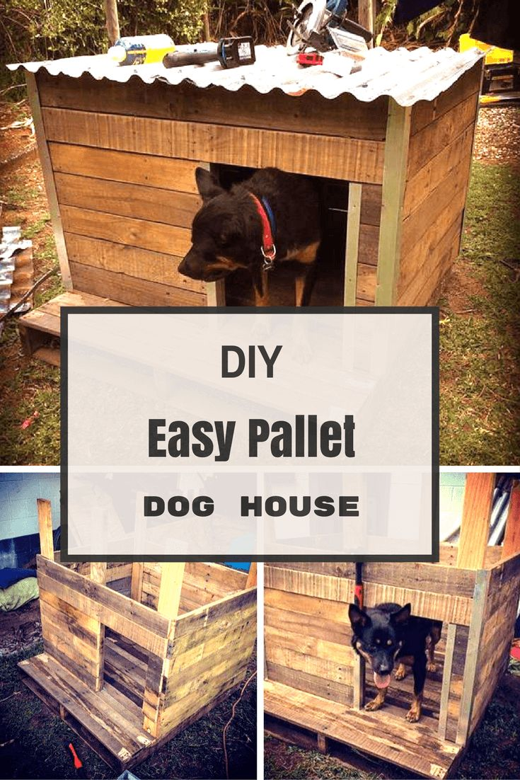 DIY Easy Pallet Dog House