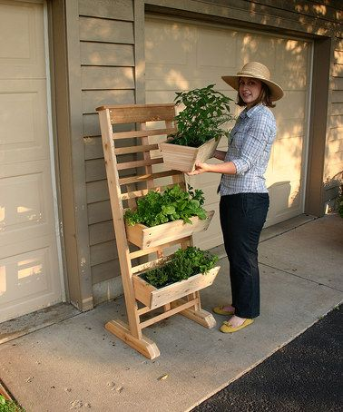 Another great find on #zulily! Three-Tier Vertical Growing System #zulilyfinds