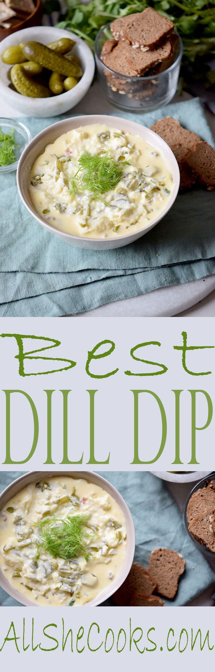 Best Dill Dip recipe is delicious and simple to make. With just a few ingredients, this appetizer dip is a winning recipe.