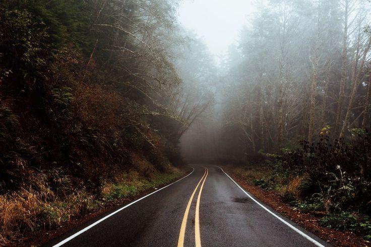 Oregon Fog Oregon coastal roads #500px #bestof500px