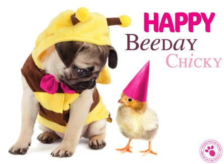 Happy Beeday~