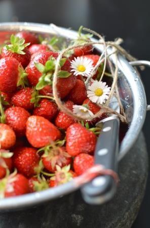 Strawberries forever - Æblegaarden B&B, Langeland, Denmark, www.aeblegaarden.dk Photo by Sannie Terese Burén