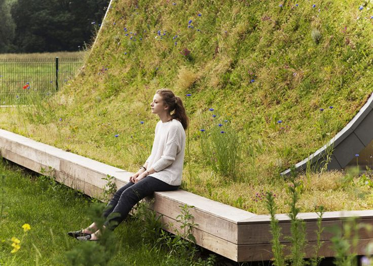 underground-wave-house-with-wildflower-and-herb-exterior-6.jpg