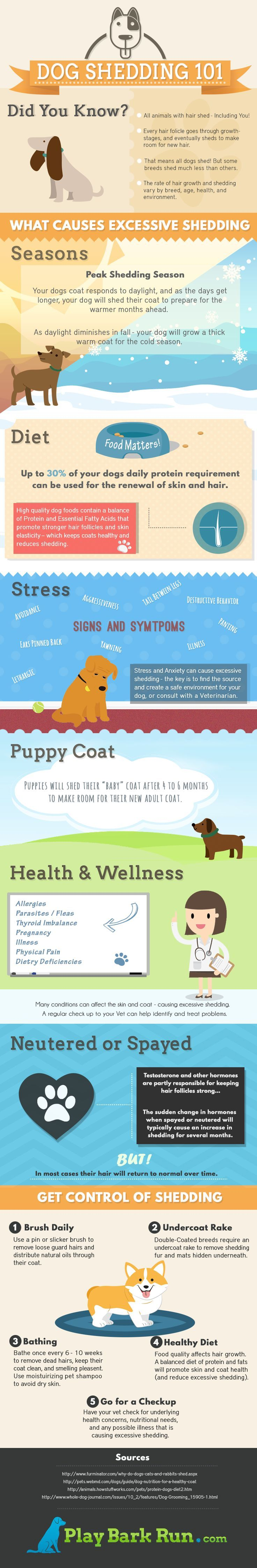 How To Stop Dog Shedding Home Remedy