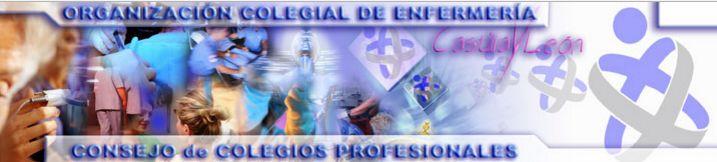 Colegio de Enfermería de Castilla yLeón, acceso para todos los colegiados a información para su desarrollo profesional, como para su práctica diaria