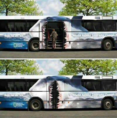Who's hopping on the bus with us?: Bus Wraps, Sharks Bus, Eating Sharks, Bus Stuff, Funny Stuff, Bus Rider, Training Wraps, Hilarious Photos, Funny Harrrharrr