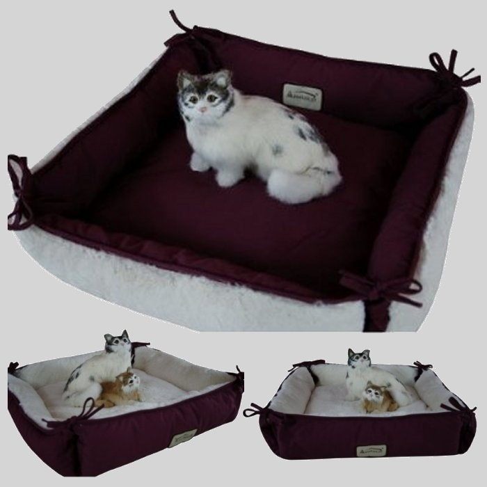 how to clean dog beds if dog has ringworms