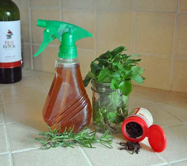 All Natural Mosquito Spray    3-4 sprigs mint    2-3 sprigs rosemary    1-2 cloves    2 cups water    Heat the water to just boiling.  Add the herbs and spice allow to cool covered for an hour or longer.  Poor into a spray container.