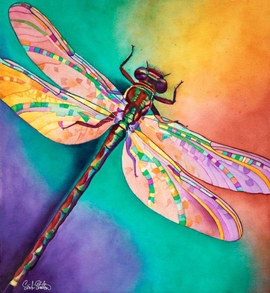 Illusion 21 x 20 dragonfly watercolor