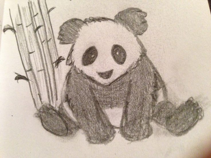 cute panda bear drawing my drawingssketches