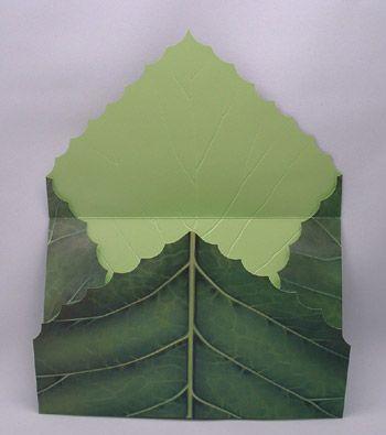 Google Image Result for http://www.behrmannprinting.com/images/port/emboss_dc_leaf_open.jpg