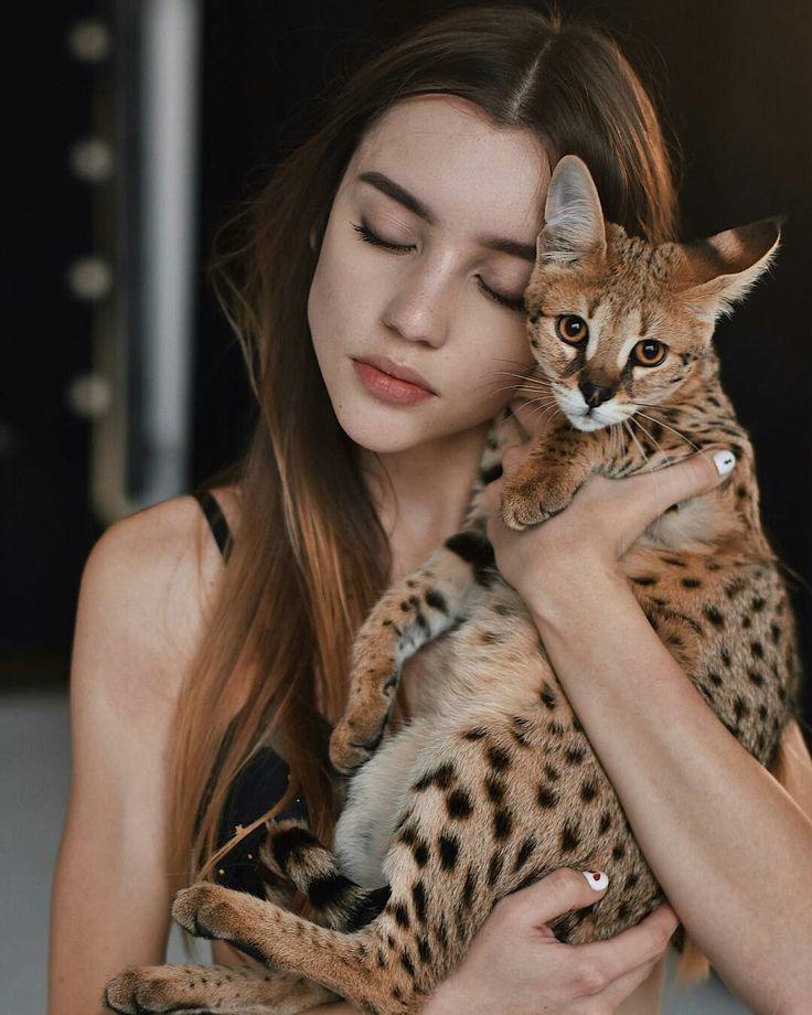 Фотосессия с кошками леопардовыми
