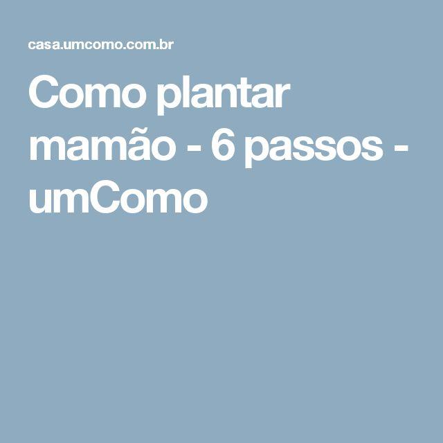 Como plantar mamão - 6 passos - umComo