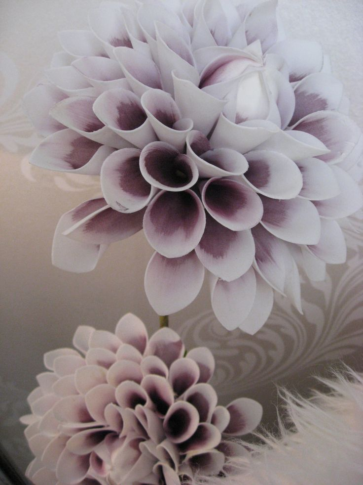 Beautiful foam flowers, white and pink