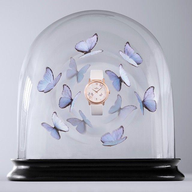 Anja [OMEGA] 還好最近沒有想買錶。(x) https://instagram.com/p/xHqBnQQbwX https://instagram.com/p/xXChsFQb11 https:// - #kso682 - Plurk