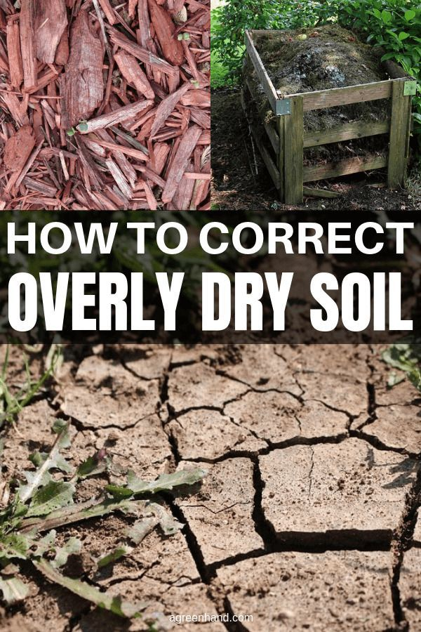 How To Correct Overly Dry Soil With Compost And Mulch Backyard Vegetable Gardens Compost Garden Soil