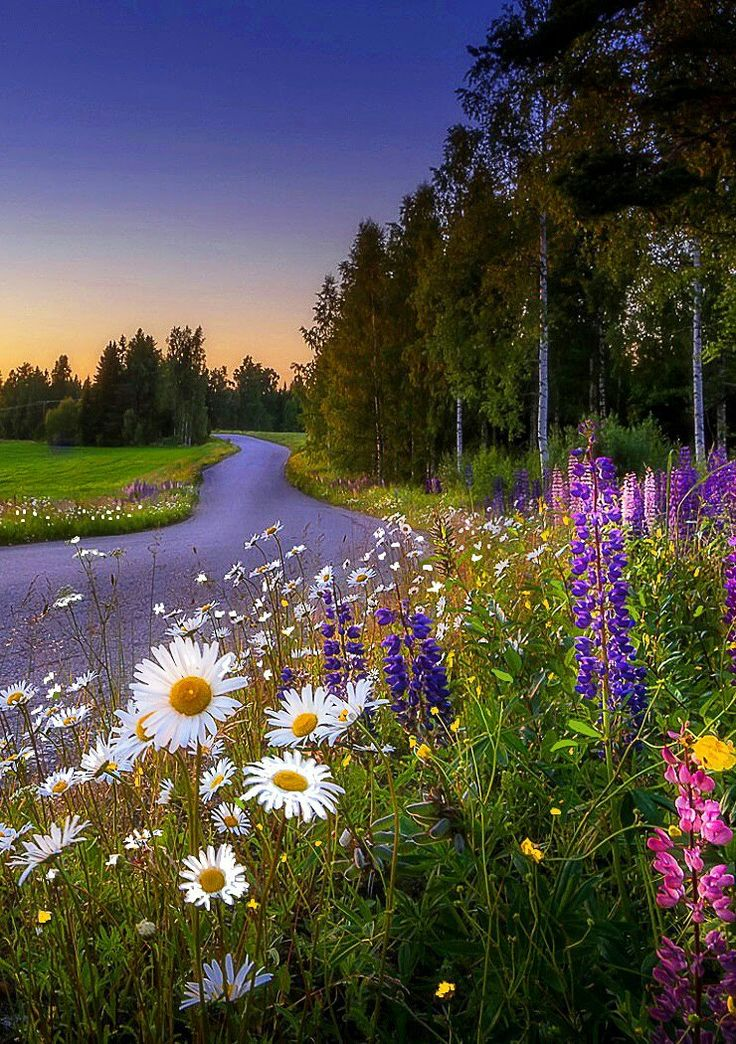 Aprecia La belleza natural no tiene precio es orgánico amazing!!!