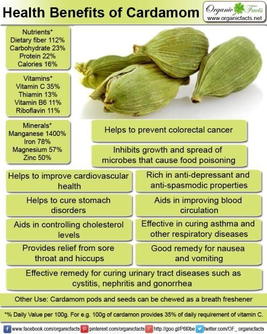 Health benefits of cardamom organic facts health