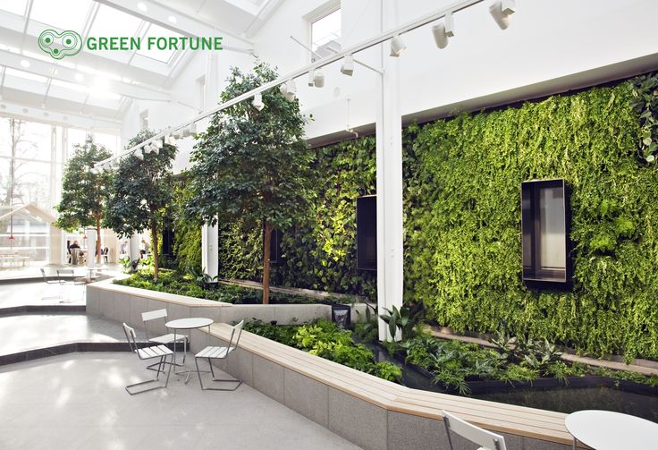 Green Fortune, plantwall with trees, vertical garden, entrance area, Pflanzenwand, groene wand