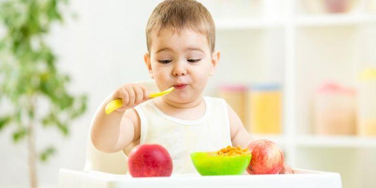 Menu Makanan Sehat Untuk Si Kecil Usia 2 Tahun