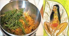 Poucas mulheres sabem: esta erva limpa vagina, elimina fungos e trata mioma! | Cura pela Natureza