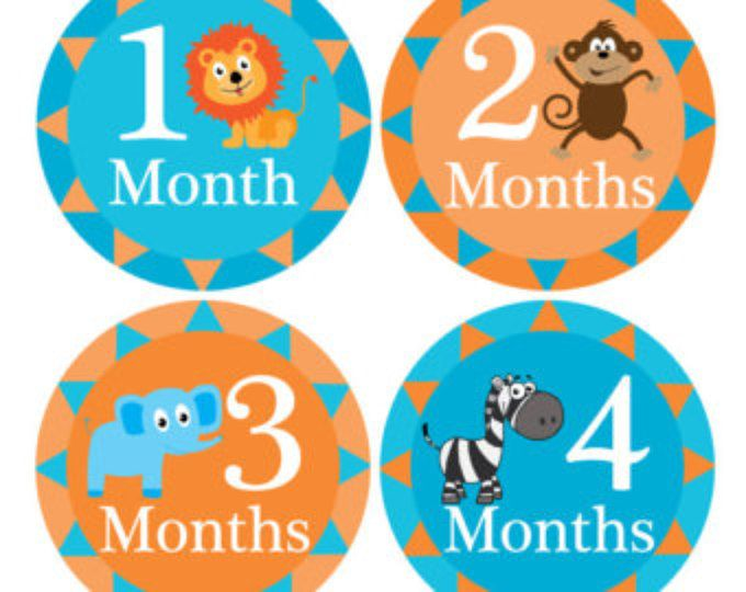 Mensual hito pegatinas, pegatinas de crecimiento mensual, pegatinas mensual de bebé, bebé pegatinas mensuales, mes Animal