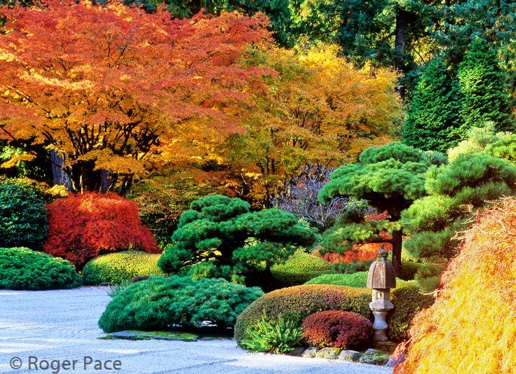 Japan Fall The Central Courtyard Portland Japanese Garden Portland Oregon Hillside
