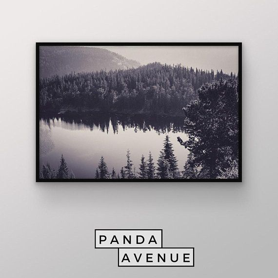Digital Download Printable Art Forest Landscape Art Digital Art Print Wall Art Photography Scandina Digital Art Prints Nature Wall Art Grey Wall Art
