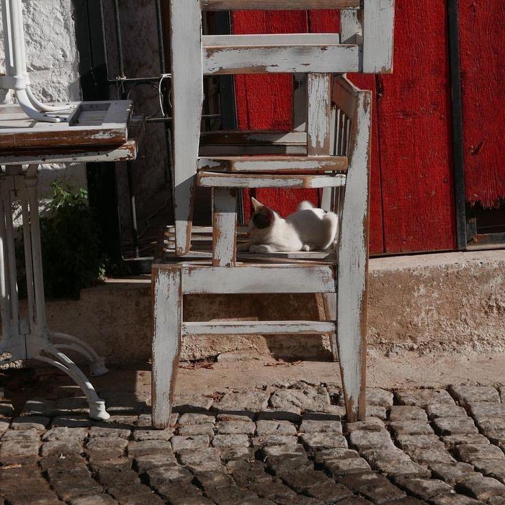 старые стулья - часть декораций нашей жизни