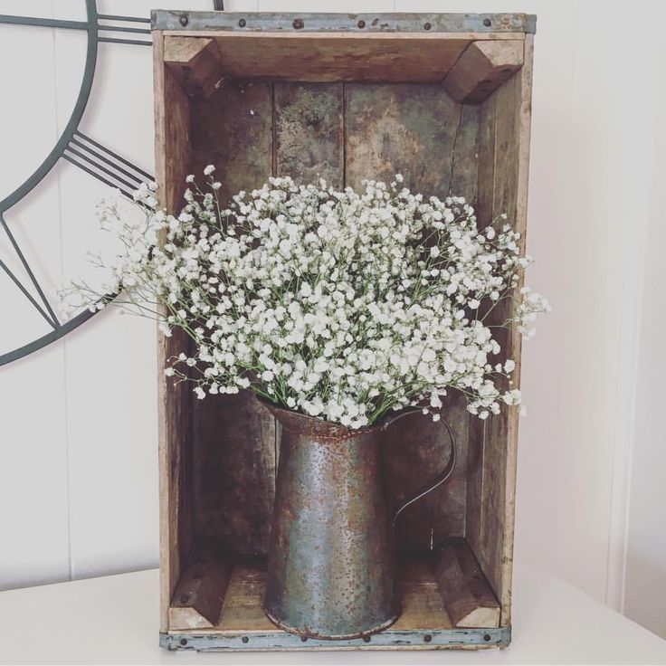 Baby's breath plant in galvanized planter, vintage wooden crate. Bohemia Avenue (@emaleighrust) on Instagram.