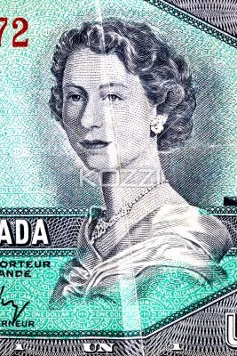 close-up shot of canadian dollar with picture. - Close-up full frame shot of Canadian dollar with picture.