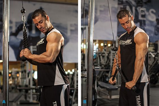 how to build strong triceps