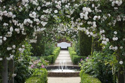 Best of Britain: Rose garden - Country Life